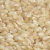 コシヒカリの玄米