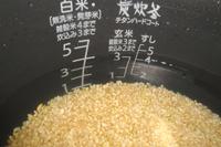 米の容量の1.6倍~2倍以上の水を入れます。
