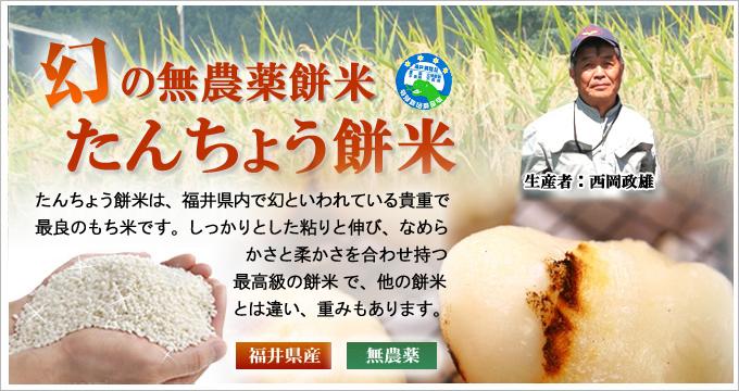新米27年産 無農薬 たんちょう餅米
