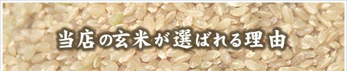 当店の玄米が選ばれる理由