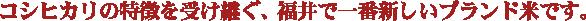 コシヒカリの特徴を受け継ぐ、福井で一番新しいブランド米です。