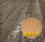 醤油カスを利用した土壌