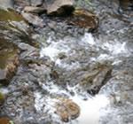 福井のきれい水