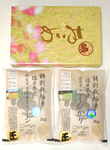 無農薬米【匠】食べ比べセット