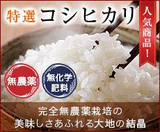 無農薬・無化学肥料栽培コシヒカリ