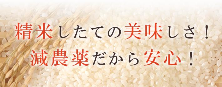 無農薬米だから安心