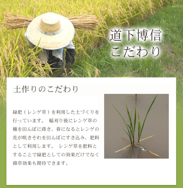 無農薬米コシヒカリ極のこだわり1