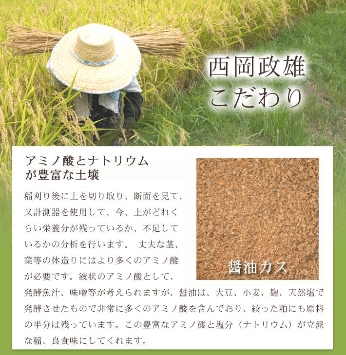 無農薬米コシヒカリ匠のこだわり1