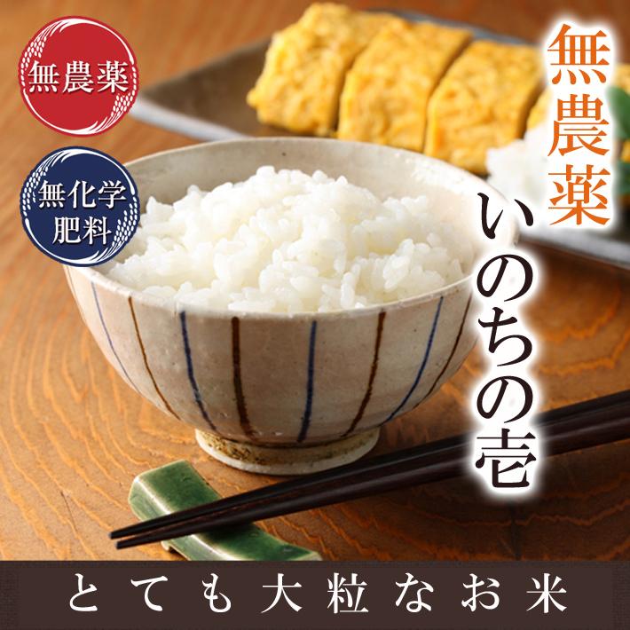 無農薬米いのちの壱