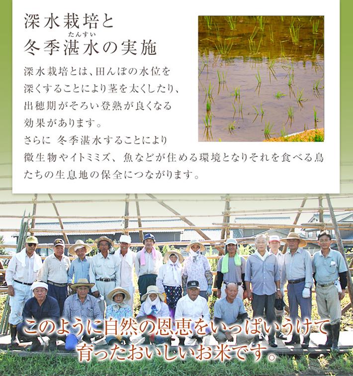 無農薬米へのこだわり3