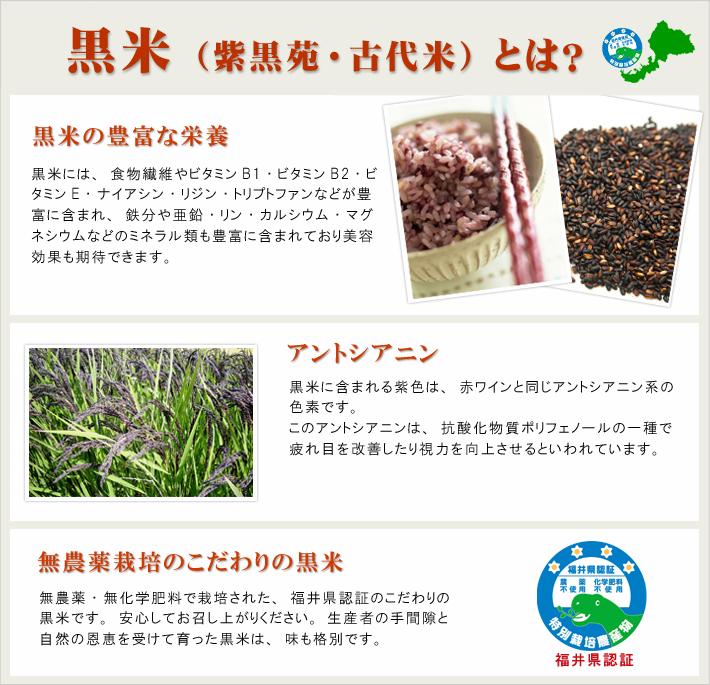 黒米 無農薬