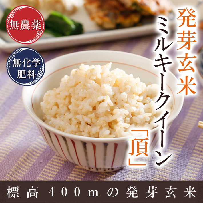 発芽玄米 無農薬 ミルキークイーン