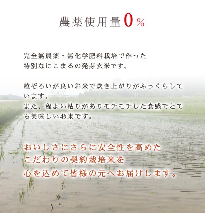 発芽玄米 無農薬
