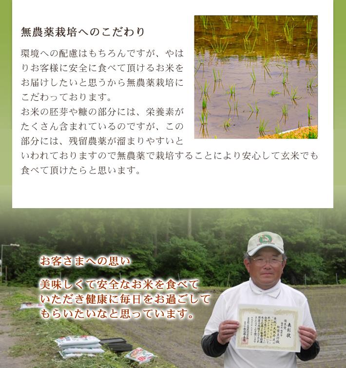 無農薬・無化学肥料栽培 ひとめぼれ