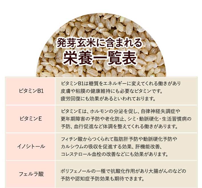 発芽玄米の栄養素一覧1