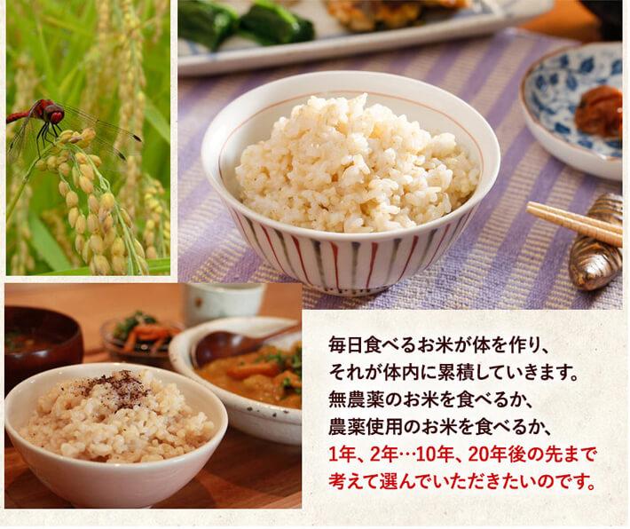 毎日食べるお米