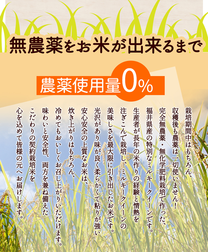 無農薬のお米が出来るまで