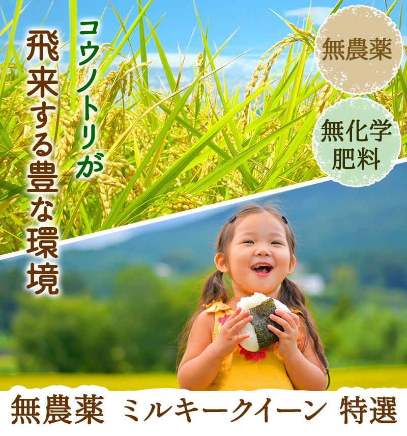 土壌分析して丹精込めて育てたお米
